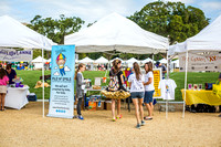 Pile of Smile at 2015 Cure Fest DC